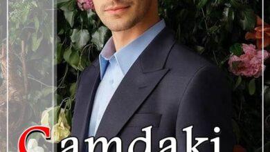 Camdaki Kiz Turkish Serial Poster TurkFilm 390x220 - دانلود سریال دختری در شیشه   Camdaki Kız با زیرنویس فارسی محصول KanalD - مدیا98