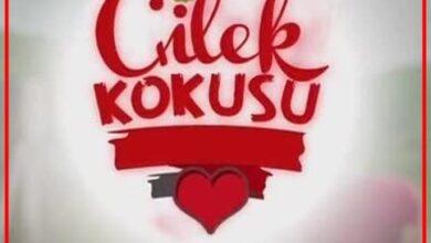Cilek Kokusu Series Turkish 390x220 - دانلود سریال بوی توت فرنگی   Çilek Kokusu با زیرنویس چسبیده - مدیا98
